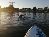 fitness in the water